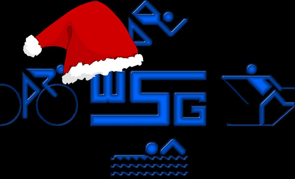 Logo-WSG-Weihnacht