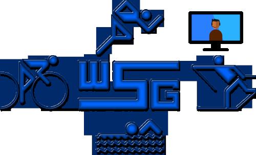 Logo-WSG-Online